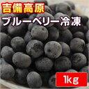 吉備高原ブルーベリー 1kg  【冷凍】【他の商品と同梱不可】