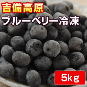 吉備高原ブルーベリー 5kg  【冷凍】【他の商品と同梱不可】