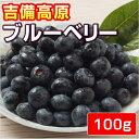 【生果】 吉備高原ブルーベリー100g  ● 生果 ●