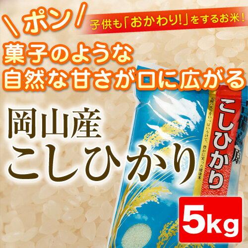 H29年産 こしひかり5kg【岡山県産】