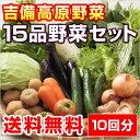 10回分■送料無料■【吉備高原農家の野菜】大盛り15品セット【税込】32400円