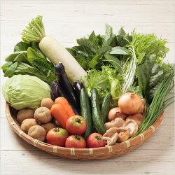 ■送料無料■【吉備高原農家の野菜】大盛り15品セット【税込】3000円