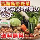 ■送料無料■【吉備高原農家の野菜】たまご・H28年産 こしひかりセット 【税込】