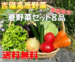■お試しセット■【吉備高原農家の野菜】お試し野菜セット