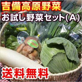 【送料無料】お試し野菜セット(A) 【クール便・常温便】8品セット