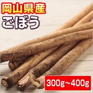 ごぼう(牛蒡)  300〜400g