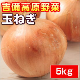 【岡山産】玉ねぎ5kg