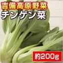 【岡山県産】 チンゲン菜・青梗菜