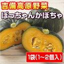 【岡山県産】吉備高原のぼっちゃん南瓜(ミニかぼちゃ)
