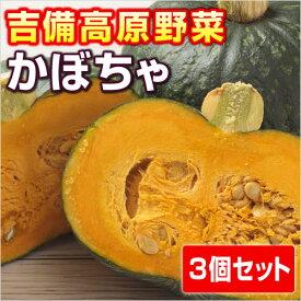 【岡山産】吉備高原のかぼちゃ 3個セット