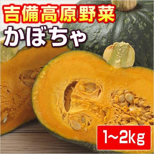 【岡山県産】吉備高原のかぼちゃ(南瓜・カボチャ)
