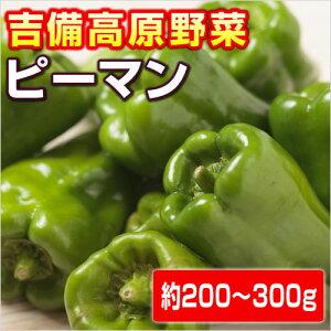 【岡山県産】吉備高原のピーマン 150g〜200g