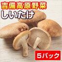 【岡山産】しいたけ (屋内菌床栽培) ● 5パック ●