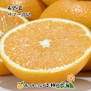 【訳あり】希望の島 サマー清見 5kg サイズ込 愛媛 中島産星タンゴール 輝き(かがやき)タンゴール 清見オレンジの枝変わり
