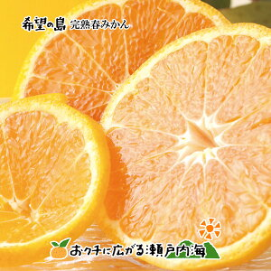 【訳あり】希望の島 完熟春みかん(カラマンダリン) 5kg サイズ込 愛媛 中島産