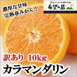 幻の柑橘!愛媛・中島産減農薬『カラマンダリン』
