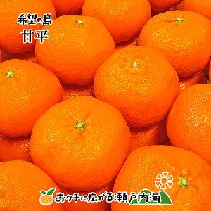 【訳あり】希望の島 甘平 サイズ込 10kg 愛媛 中島産かんぺい みかん