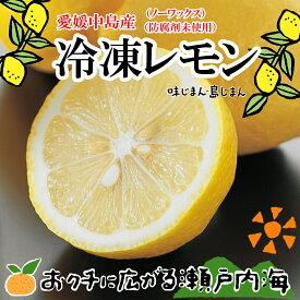国産レモン 500g 残留農薬ゼロ 冷凍レモン【希望の島 カットレモン 国産 レモンサワー用】愛媛・中島産