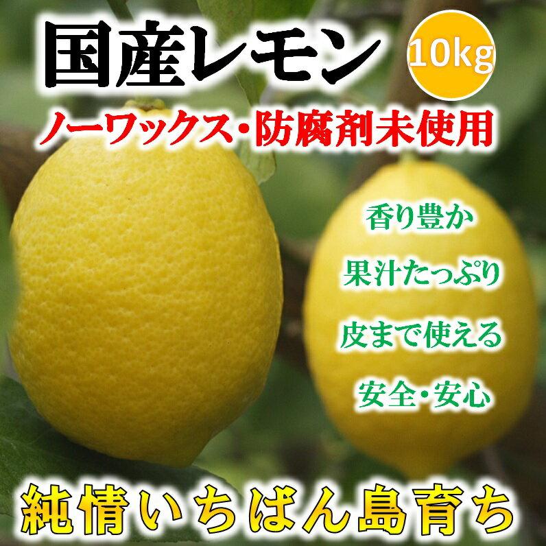 国産レモン 10kg 残留農薬ゼロ 訳あり 加工用 ジュース用 レモン【希望の島 ユーレカレモン】