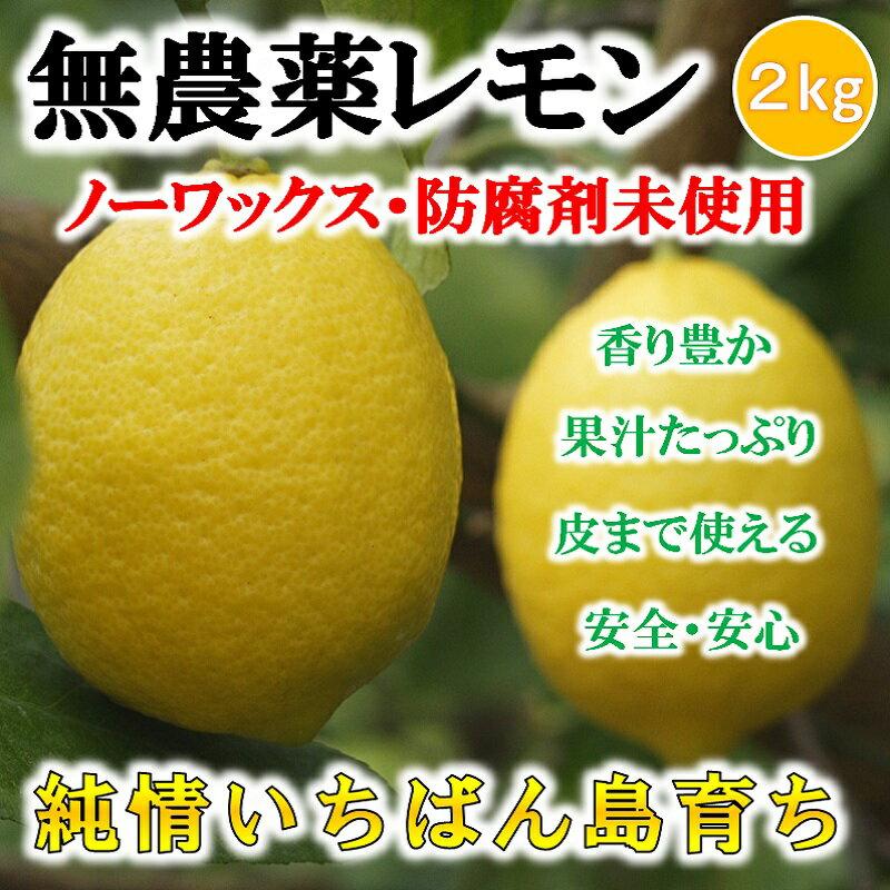 無農薬レモン 国産レモン 2kg 愛媛・中島産【希望の島 ユーレカレモン 国産 無農薬 訳あり】