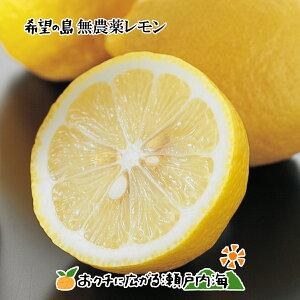 希望の島 無農薬レモン 10kg サイズ込 愛媛 中島産グリーンレモン ユーレカレモン 国産レモン 無農薬