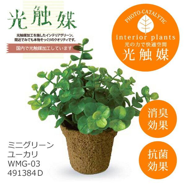 あす楽 光触媒 インテリアグリーン ミニグリーン ユーカリ WMG-03 491384D フェイクグリーン 造花 観葉植物 人工