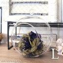あす楽 松野ホビー ハンギング グラスプランツ ラウンド L FR-968 ガラス製 花器 ハンギングプランツ エア…