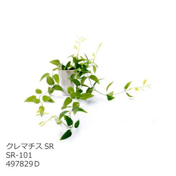 あす楽 光触媒 インテリアグリーン クレマチスSR SR-101 497829D 造花 観葉植物 人工 フェイクグリーン