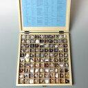 岩石・鉱物標本100種
