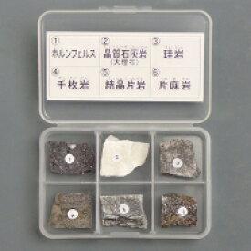 【DM便発送可能】 東京サイエンス 岩石標本 変成岩 6種セット