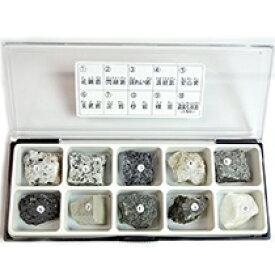 【ネコポス発送】東京サイエンス 岩石標本 造岩鉱物 10種セット