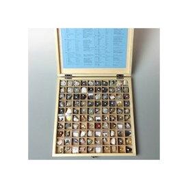 東京サイエンス 岩石 鉱物 標本 100種