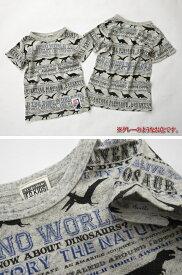 【SALE】fo7267 恐竜ボーダー Tシャツ 100-140cm/キナリ[エフオーキッズ/F.O.KIDS/FOKIDS]【RCP】
