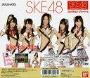 Ske48pc2