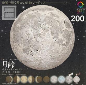 10 磁铁一套 & 表带 ★ 所有发光月球科学鲜明的色彩