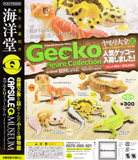 [Gacha Gacha Complete set]Capsule Q Museum Gecko Figure Collection Part3 set of 5