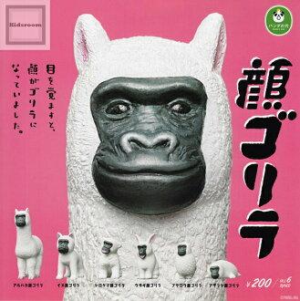 大熊猫的洞孔脸大猩猩★全6种安排