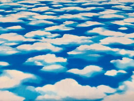 オックスプリント CLOUD クラウド 全面雲のオックス
