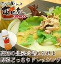 【グラッツェミーレ】高知の生姜は温もるぜよ野菜どっさりドレッシング300ml
