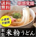 新感覚麺 本生 米粉うどん【送料無料】【6食入】【17B01】