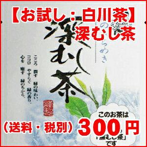 【日本茶】【緑茶】新茶菊之園の【深蒸し茶】お試し20g袋入【RCP】