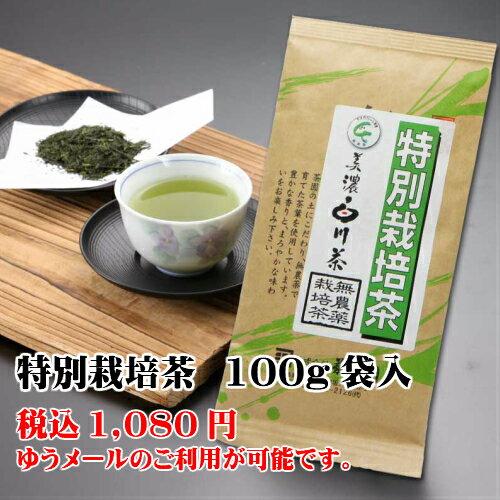 海外販売専用商品日本茶 煎茶 白川茶 菊之園 岐阜 美濃 白川 一番茶 【特別栽培茶(無農薬栽培)】100g袋入【RCP】【楽天BOX受取対象商品】【コンビニ受取対応商品】 日本国内への発送の場合、消費税を加算させていただきます。