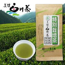 美濃白川茶【特別栽培茶】100g袋入