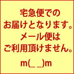 和スイーツようかんおみやげ白川の香り【お茶ようかん】菊之園【RCP1209mara】【RCP】