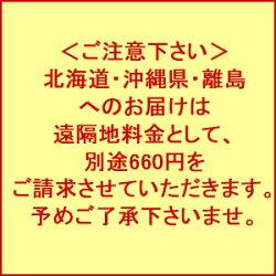 【HARIO】ハリオフィルターインボトルワイン型ボトル白川茶セットお中元耐熱ガラス750ml水出し抽出タイプ税込・送料込3,564円【RCP】