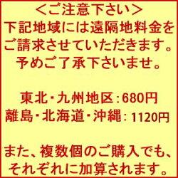 【お茶ペットボトル500ml】3,380円岐阜県のお茶白川茶ペットボトル500ml×24本こだわりのお茶ペットボトル送料込価格【領収書対応可】