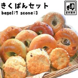 ベーグル 送料無料 ★ きくぱんセット ★ベーグル スコーン 手作り パン 送料無料 セット ギフト 内祝い