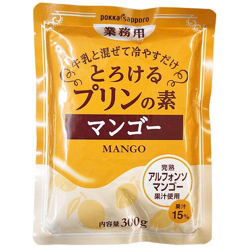 とろけるマンゴープリンの素 300g