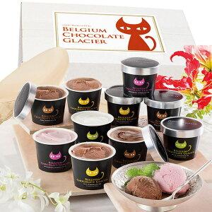 [ お中元 送料無料 ] イーペルの猫祭り ベルギーチョコレート グラシエ ( アイス職人 ) AH-BCGR < 4種 計 10個 >メーカー直送 [ スイーツ ギフト アイスクリーム アイス ギフト ] 人気 おすす