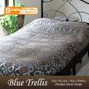 Bluetrellis220sblue